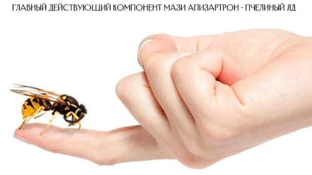 Апизартрон - инструкция по применению, мазь, отзывы, цена, состав