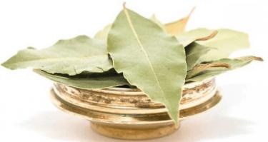 Лечение Лавровым Листом остеохондроза - народные рецепты