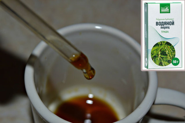 Экстракт водяного перца - применение и действующее вещество