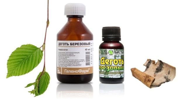 Лечение лямблиоза дегтем: свойства дегтя и рецепты приготовления