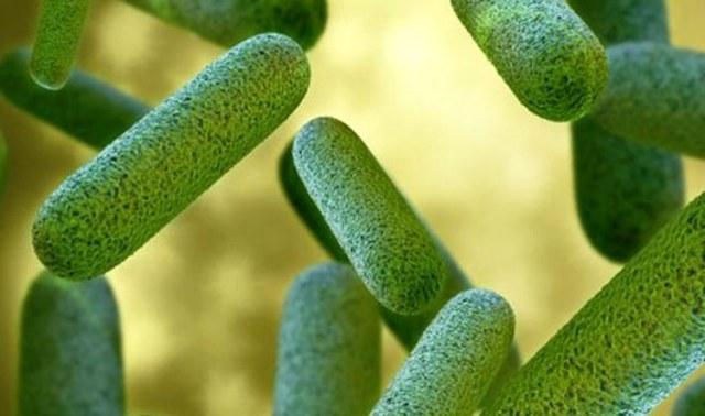 Как лечить зеленые сопли