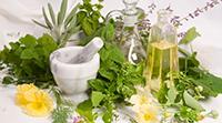 Лечение почек народными средствами в домашних условиях