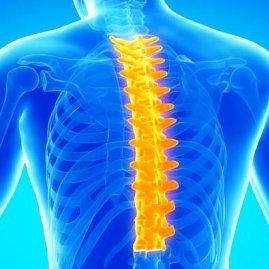 Симптомы грыжи диска грудного отдела позвоночника