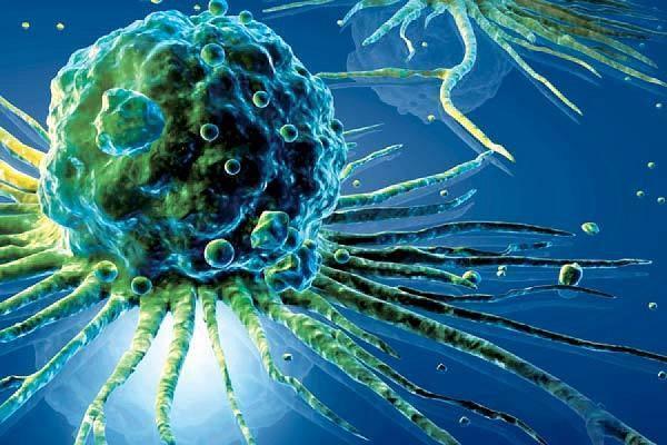 Как пить чистотел при онкологии: другие травы, овес