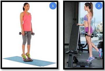 Подъем на носки с гантелями для икроножных и камбаловидных мышц ног