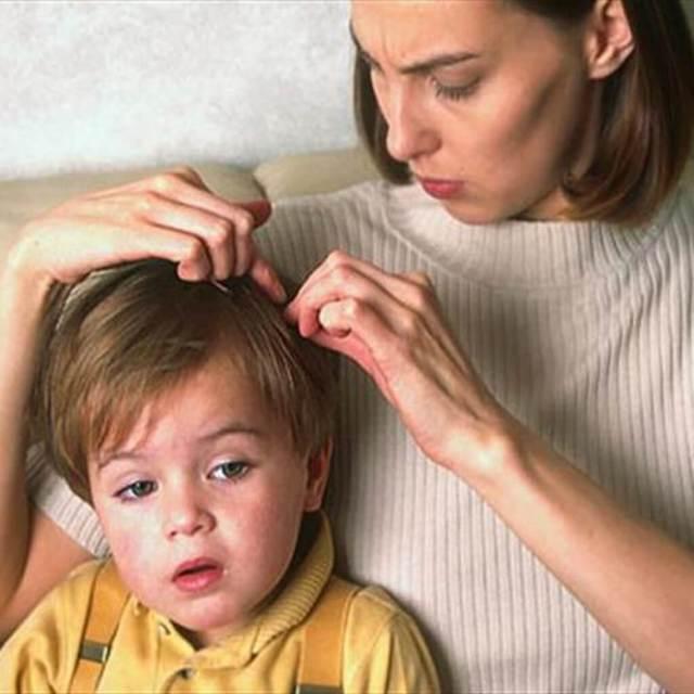 Что делать если у ребенка вши?