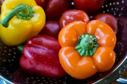 Можно ли есть продукты с плесенью