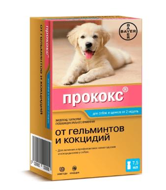 Таблетки от глистов для кошек: как дать лекарство, средство, капли на холку, препараты и отзывы