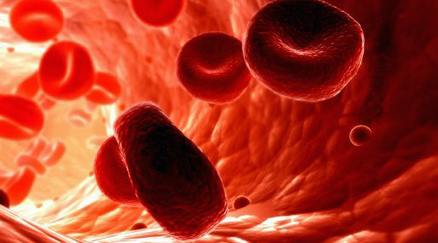 Лечение анемии в домашних условиях