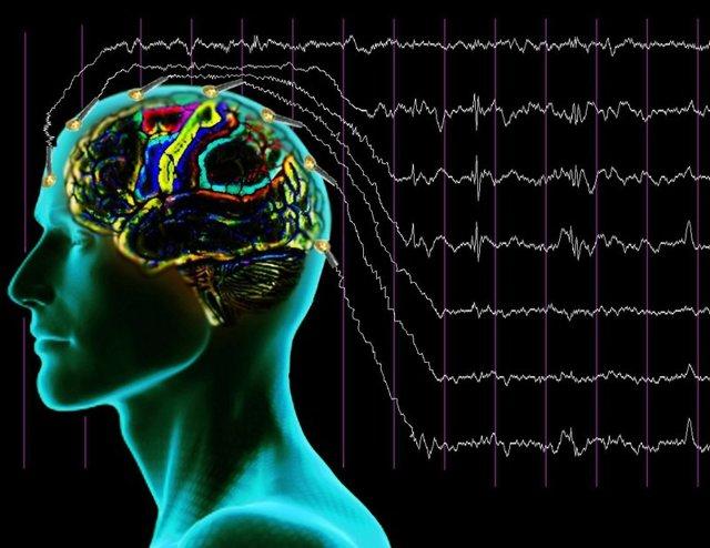 ЭХО обследование головы: что это такое, когда назначают