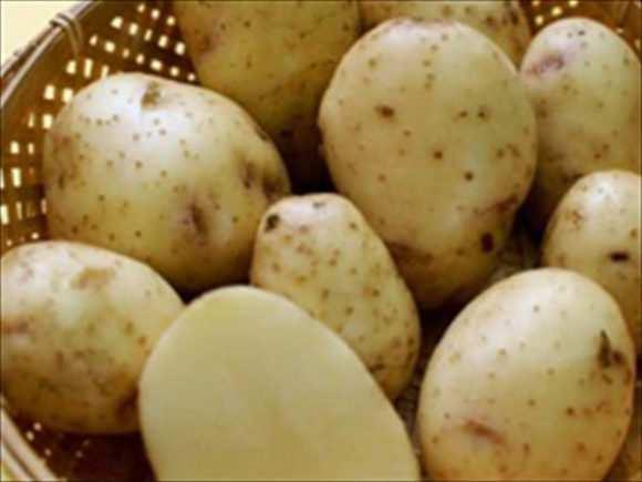 Картофельное пюре для грудничка: когда и как?