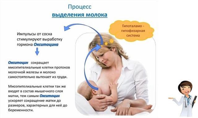 Как понять, хватает ли ребенку грудного молока?