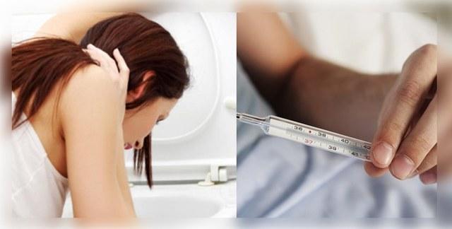 Анизакидоз: симптомы, диагностика, лечение человека и фото