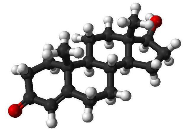 Анализы крови на гормоны у женщин: как сдавать