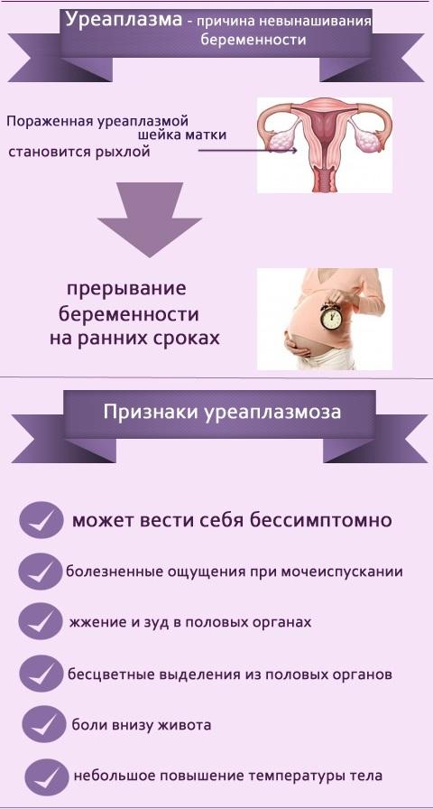 Уреаплазма у женщин: лечение и препараты