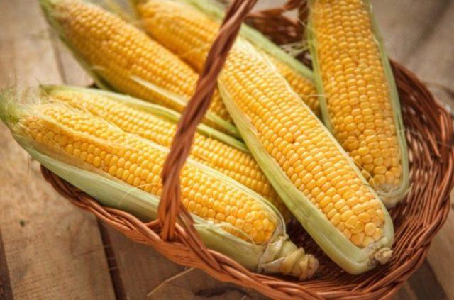 Кукуруза при грудном вскармливании: можно или нет?